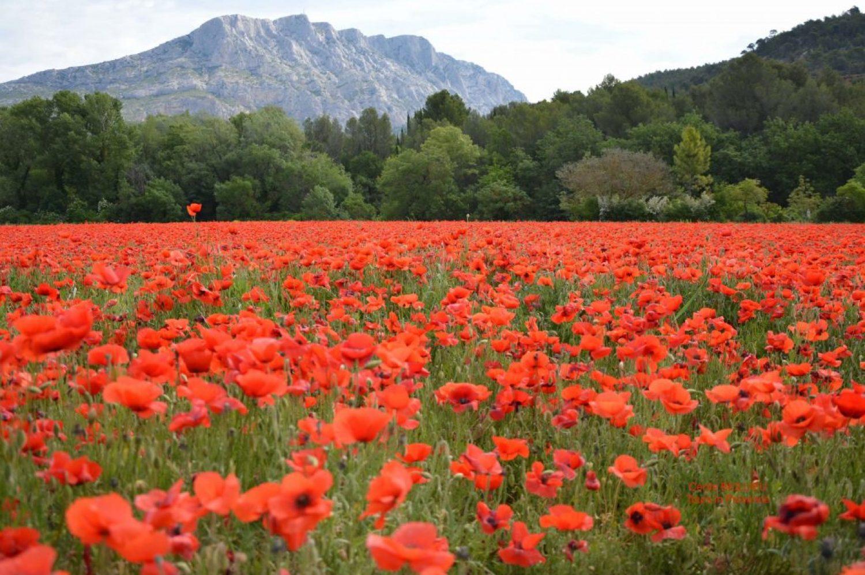 Aix-en-Provence and the Sainte Victoire Mountain