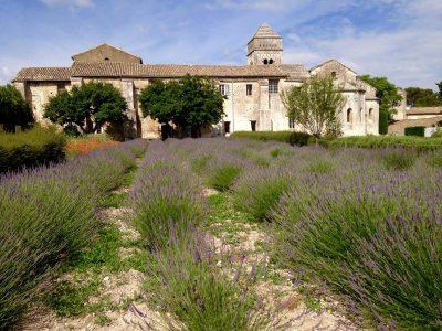 Vincent Van Gogh in St-Remy-de-Provence